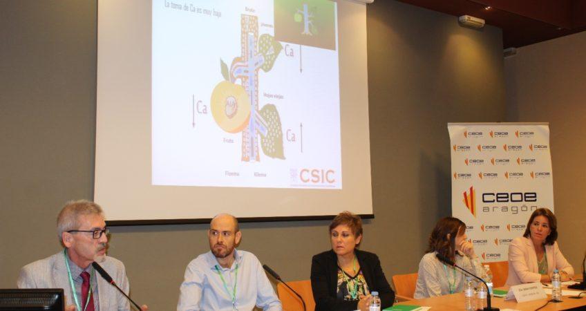 Jesús Val, cienfítico del EEAD CSIC en su charla en QUIMIARAGON 2018