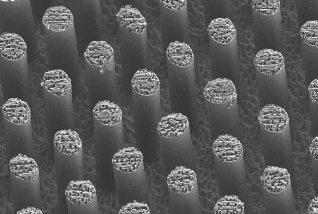 Micropilares-SEM