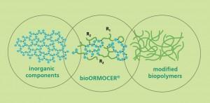 bioORMOCER