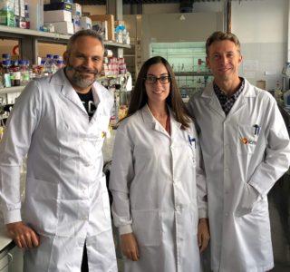 investigadores del ICMA patrimonio
